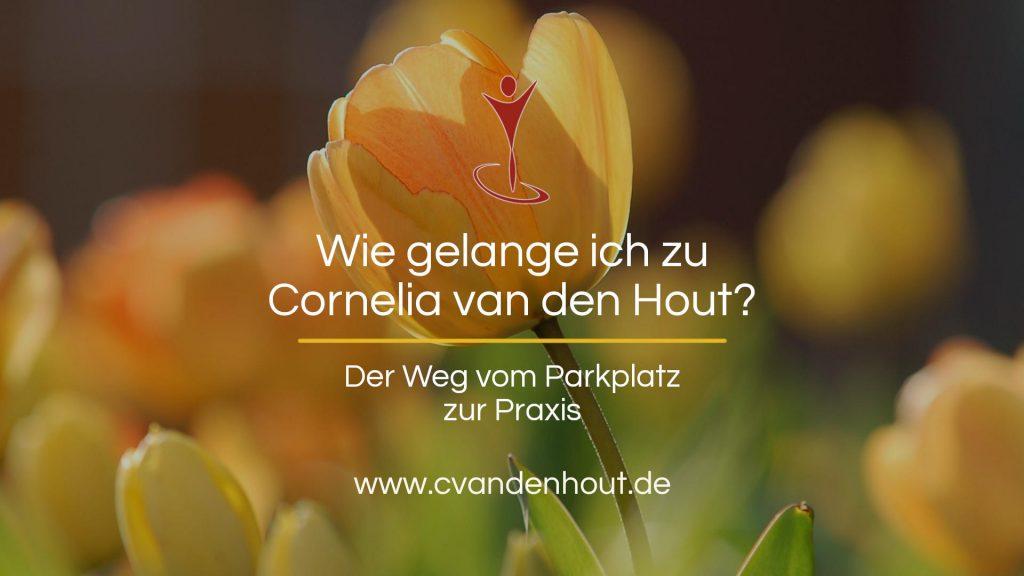 Der Weg zur Praxis • Diplom Psychologin Cornelia van den Hout • Bad Nauheim | Oberursel